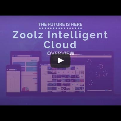 intelli_zoolz_video_image_email